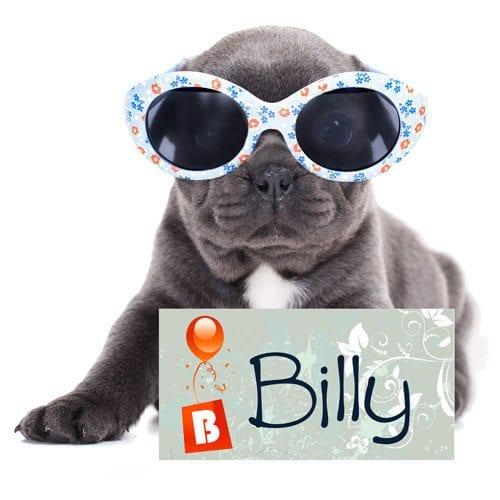 Navnemerke til hund fra Presis