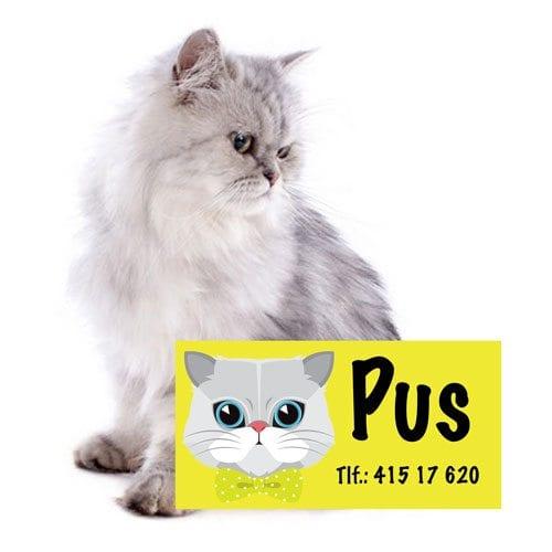 Navnemerker til katt fra presisfoto